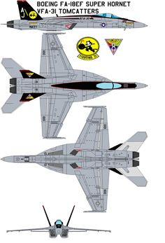 Boeing FA-18EF Super Hornet vfa-31 tomcatters The Tomcatters currently fly the most capable and formidable strike fighter in the U.S. Navy, the F-14D Super Tomcat. Ten fighter/reconnaissance aircra...
