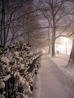 bluepueblo:  Snowy Night, Boston, Massachusetts photo via heidi