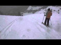 Siegi Tours Team Skiing in Powder Snow Salzburg, Snowboarding, Skiing, Ski Deals, Ski Packages, Ski Rental, Ski Holidays, Tour Operator, National Geographic