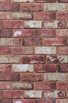 Tamis   Novidades em papel de parede   Padrões de papel de parede   Papel de parede dos anos 70