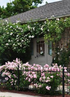 Roses galore!!! What a charming front yard idea...who needs evergreens? I suppose it's lonely in the winter...but I for one would sacrifice!