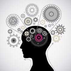 Mentes Cuadradas: Neuroeducación