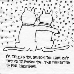 It's getting Christmas-y