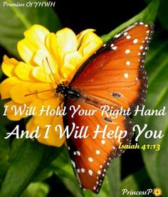 Isaiah 41:13 For I, the LORD your God, will hold your right hand, Saying to you, 'Fear not, I will help you.
