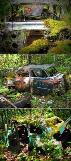 Planes, Trains and Automobile Graveyards