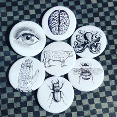 #anatomy #anatomical #scientificillustration #scientific #vintage #brains #eyes #octopus #bee #palmistry #beetle #cow #pins #pin #pingame #pinbackbuttons #button #buttons by 520buttons