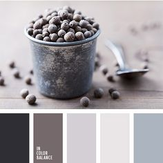 Frozen blueberry in metal pot.   Color inspiration for design, wedding or outfit. More color pallets on color.romanuke.com.