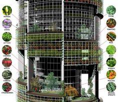 modelo de agricultura urbana - Buscar con Google