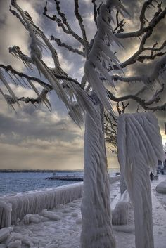 ~~Deadly Tree ~ water from the lake blows onto trees and freezes, Versoix, Canton of Geneva, Switzerland by merlune~~the beauty of nature! Winter Szenen, Winter Magic, Beautiful World, Beautiful Places, Beautiful Pictures, Foto Nature, Winter Beauty, Amazing Nature, Belle Photo