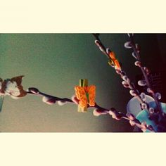 #spring #decor #butterfly #easter #catkin