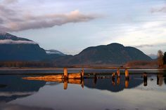 Fraser River - Chilliwack, British Columbia