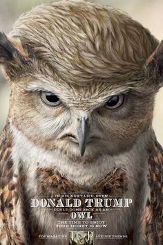 """TOP Magazine: """"Donald Trump"""" Print Ad  by ALMAP BBDO Brazil, Illusion"""
