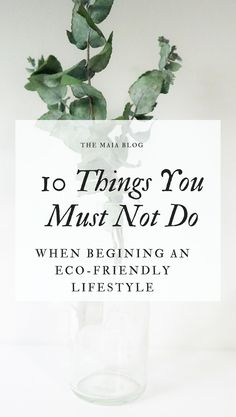 10 Things Not To Do When Starting an Eco-Friendly Lifestyle – Maia