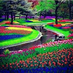 Keukenhof Tulip Gardens in The Netherlands