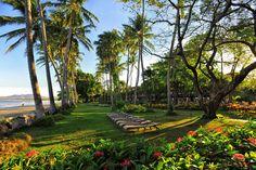 Tamarindo Diria Beach Resort in Tamarindo, CC | BookIt.com $676