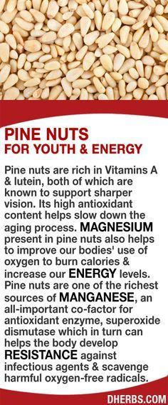 Pine nuts are rich in Vitamins A & lutein both known to support sharper vision. Its high antioxidant content helps slow down the aging process. Magnesium present in pine nuts helps to improve our bodies' use of oxygen to burn calories & increase our ener Health Facts, Health And Nutrition, Health And Wellness, Nutrition Guide, Natural Medicine, Herbal Medicine, Nutrition Sportive, Salud Natural, Healing Herbs
