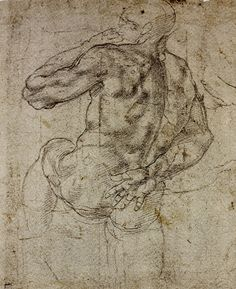 anatomy by Michelangelo - - -
