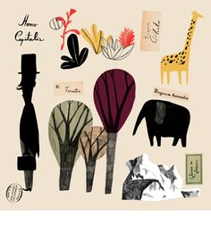 Slovak Illustrators Association Blog. Catarina Sobral