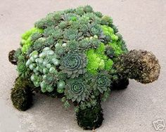 I would love to have this little guy in my garden. How cute!