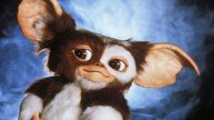 Gremlins, Scary Movies, Google Images, Goats, Teddy Bear, Content, Wallpaper, Animals, Pictures