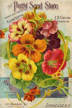 The Perry Seed Store; Vintage Seed Catalog; Nasturtiums