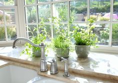 garden windows | garden window