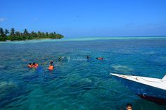Pulau Karimun Jawa, selamat datang di rumah Kami. yuh visit taman nasional karimunjawa indonesia, explore spot wisata terbaik di Jawa Tengah dengan booking paket karimunjawa.