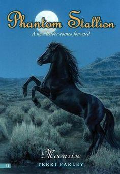 Phantom Stallion Book Series | Moonrise (Phantom Stallion Series #14) [NOOK Book]