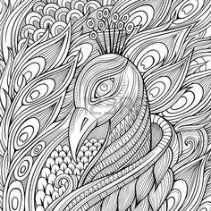 paon dessin: Décoratif ornement fond paon oiseau. Vector illustration Illustration