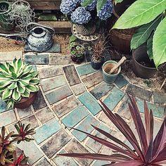女性で、Otherのコルジリネ/ジョーロ/DIY/紫陽花/ネオレゲリア/アガベ…などについてのインテリア実例を紹介。「異国ガーデン、上からバージョン。 (前のと同じような写真でゴメンナサイだよ)  紫陽花を置いている台は、ずっと昔に作ったもの。 元オーブンの天板。をリメイク!」(この写真は 2015-07-07 11:30:43 に共有されました)