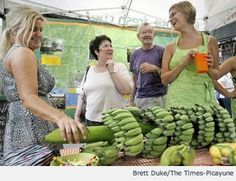 New Orleans-grown bananas? Yes, it's true! Learn more about New Orleans bananas