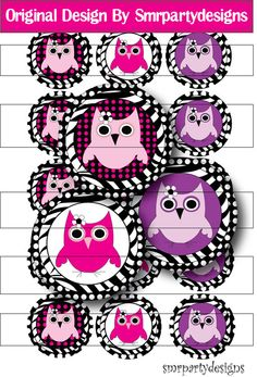 Zebra Owls Bottle Cap Image one inch circle by smrpartydesigns, $1.99
