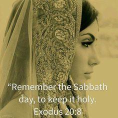Shabbat Shalom  ~ Exodus 20:8                                                                                                                                                      More