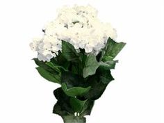 Discount silk flowers