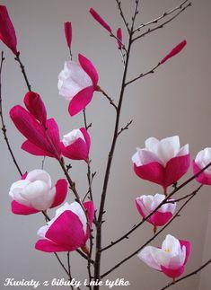 kwiaty z bibuły i nie tylko: Magnolia