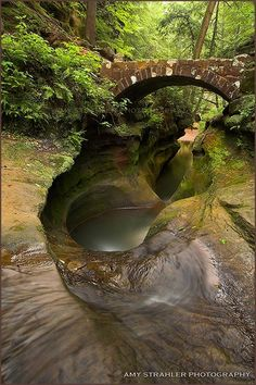 Hocking Hills in Logan, Ohio. Feels like you have stepped back in time and around any corner could be a dinosaur.
