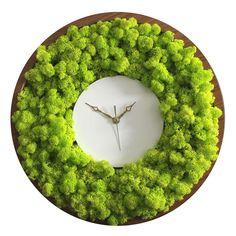 Best 12 Reindeer Moss Clock by Noktuku – SkillOfKing. Moss Wall Art, Moss Art, Plant Wall, Plant Decor, Island Moos, Moss Graffiti, Moss Decor, Decoration Plante, Modern Crafts