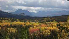 Fall Colors in Denali National Park & Preserve in #Alaska