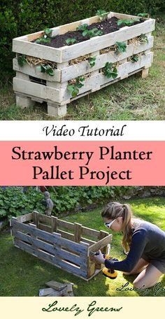Learn how to make a strawberry planter out of a single wooden pallet!  This could be used for other plants too!
