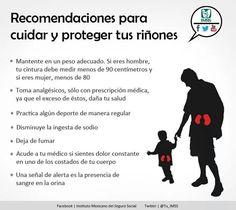 Recomendaciones para cuidar y proteger tus riñones