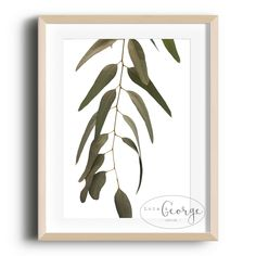 Lola & George - Hanging Out Print Printed on quality silk card. Available in or size. Unframed - any frames and/or additional items shown in product photos not included. Plant Decor, Hanging Out, Print Design, A3 Size, Prints, Cards, A4, Color, Frames