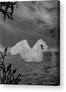 Swan Wood Print featuring the drawing Night Bath by Faye Anastasopoulou Wall Art Prints, Canvas Prints, Fine Art Posters, Bath Art, Ocean Scenes, Thing 1, Curtains For Sale, Wood Print, Artist At Work