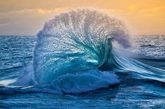Voyage-nature-photographie-dépression-sauvetage-william-patino6