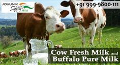 Adhunik Swadeshi Bhandar provides best cow milk at an affordable price in Dwarka, New Delhi. Join us today!! We have taken great efforts to ensure that your visit to Dwarka Khadi Bhandar Online is an excellent and fruitful one and that your privacy is constantly respected.