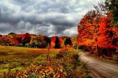 Romeo Michigan in Autumn