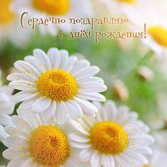 ЛюбовьПавловна, с Днём Рождения!!! - стр. 3 - Праздники и поздравления