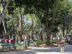 Marisela Valdivia - Fotoblog: Fotografía