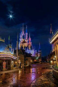✨ Cinderella Castle at night ✨ Hades Disney, Disney Day, Disney Nerd, Disney Theme, Cute Disney, Disney Stuff, Walt Disney Parks, Disney World Florida, Disney World Vacation