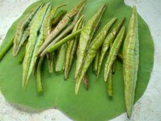 www.TraLaSen.vn Asparagus, Green Beans, Vegetables, Food, Veggie Food, Vegetable Recipes, Meals, Veggies