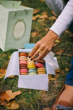 Paris Picnic - The Londoner // The macaron field is carefully harvested by a collection of girls in pinnies. Their hands flurry quickly and expertly over the sweet jewels, plucking them to place into pretty little boxes.